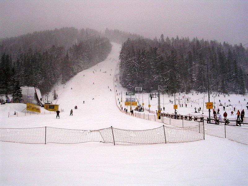 Фото zakopane: sleigh ride in chocholowska valley (10022012), снятое barbara gasienica - jozkowy